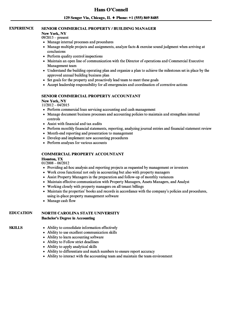 download commercial property resume sample as image file