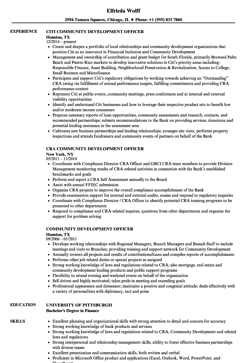 community development officer resume samples