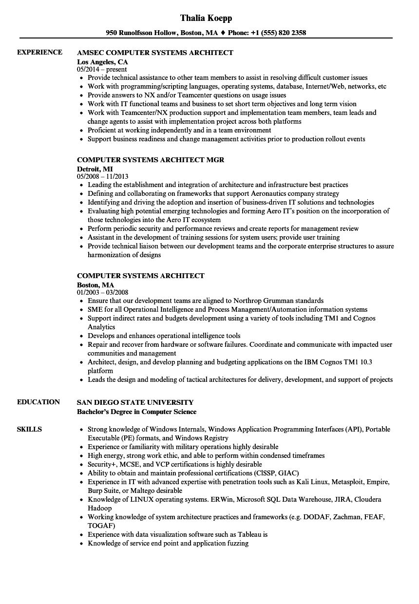 computer systems architect resume samples