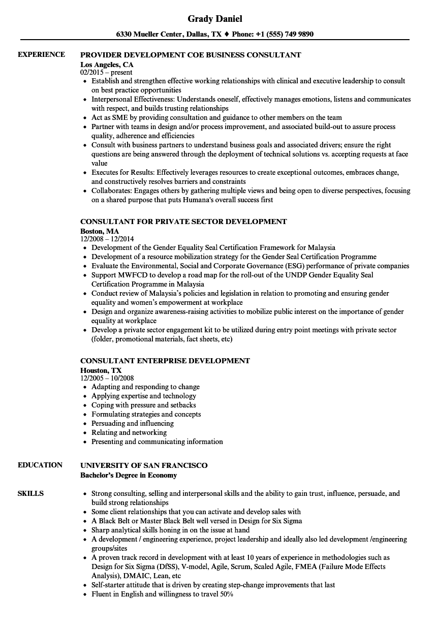 Consultant Development Resume Samples | Velvet Jobs