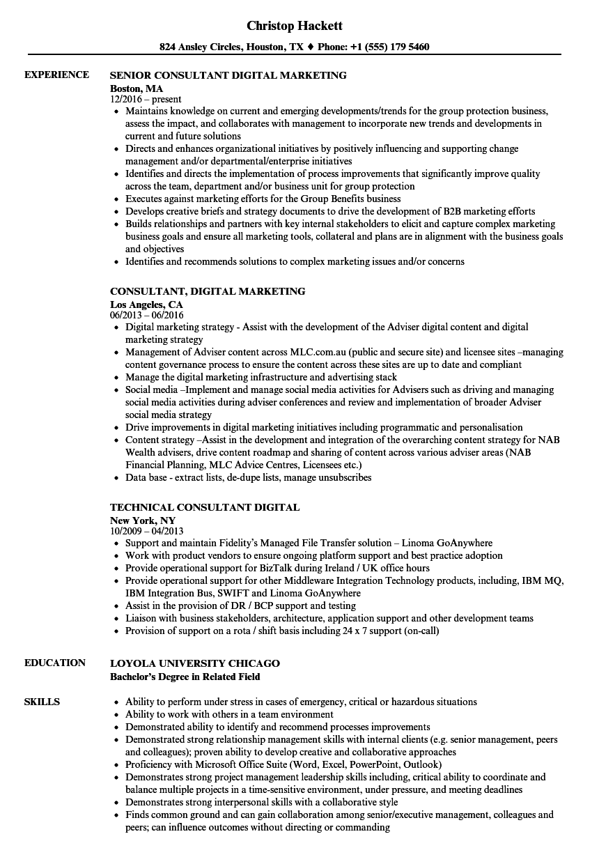 Download Consultant Digital Resume Sample As Image File