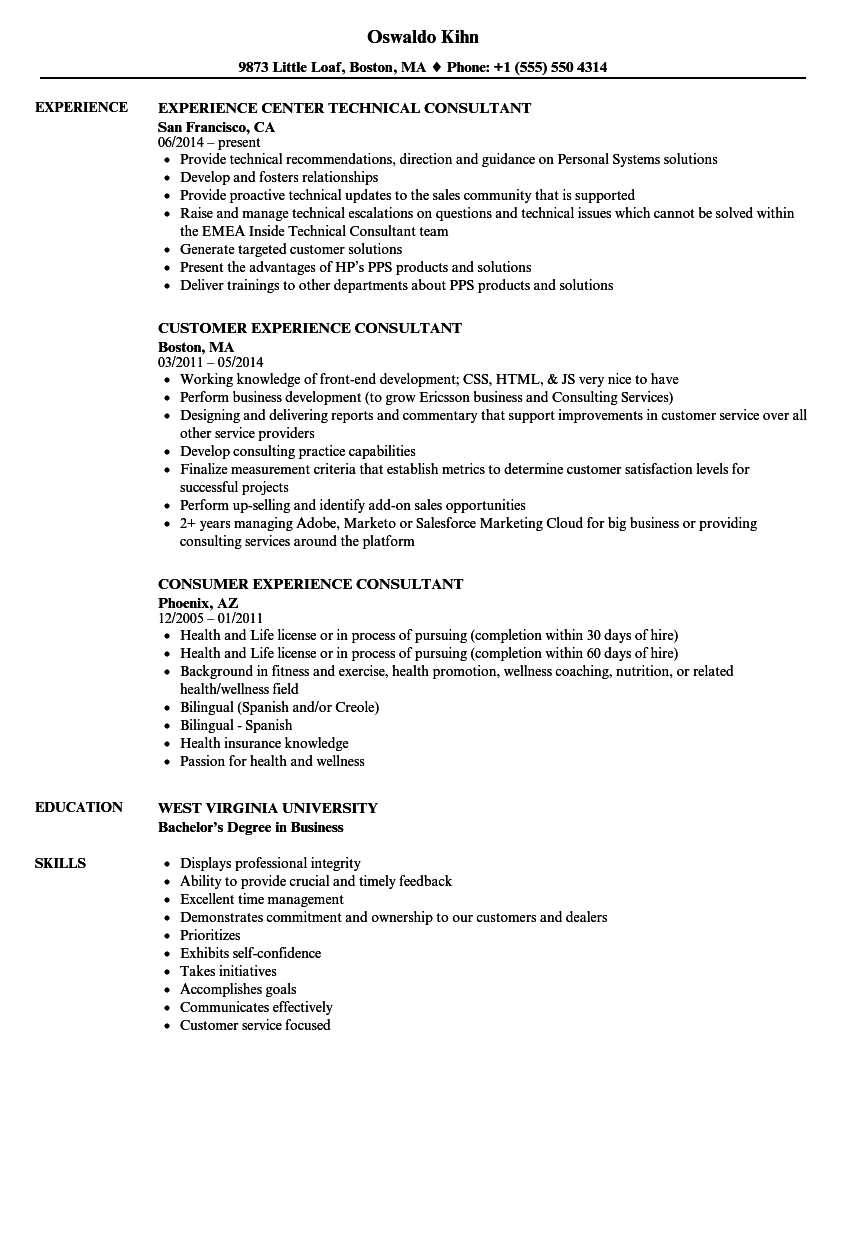 Download Consultant Experience Resume Sample As Image File  Customer Service Experience Resume