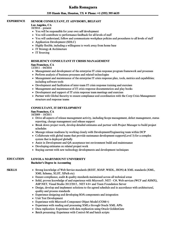 Consultant, IT Resume Samples | Velvet Jobs