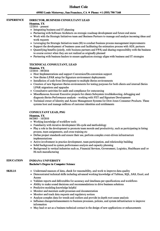 Consultant Lead Resume Samples | Velvet Jobs