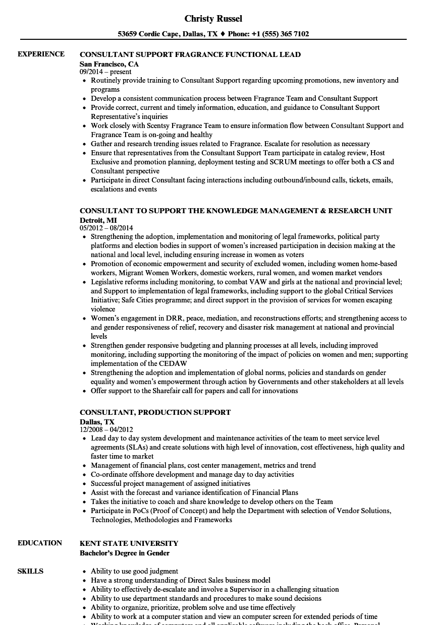 Consultant Support Resume Samples | Velvet Jobs