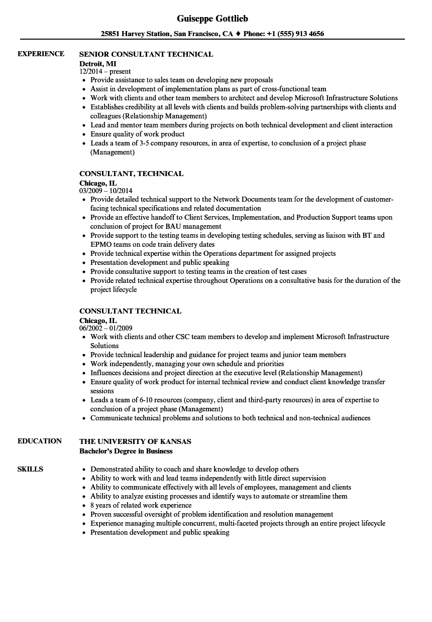 consultant  technical resume samples