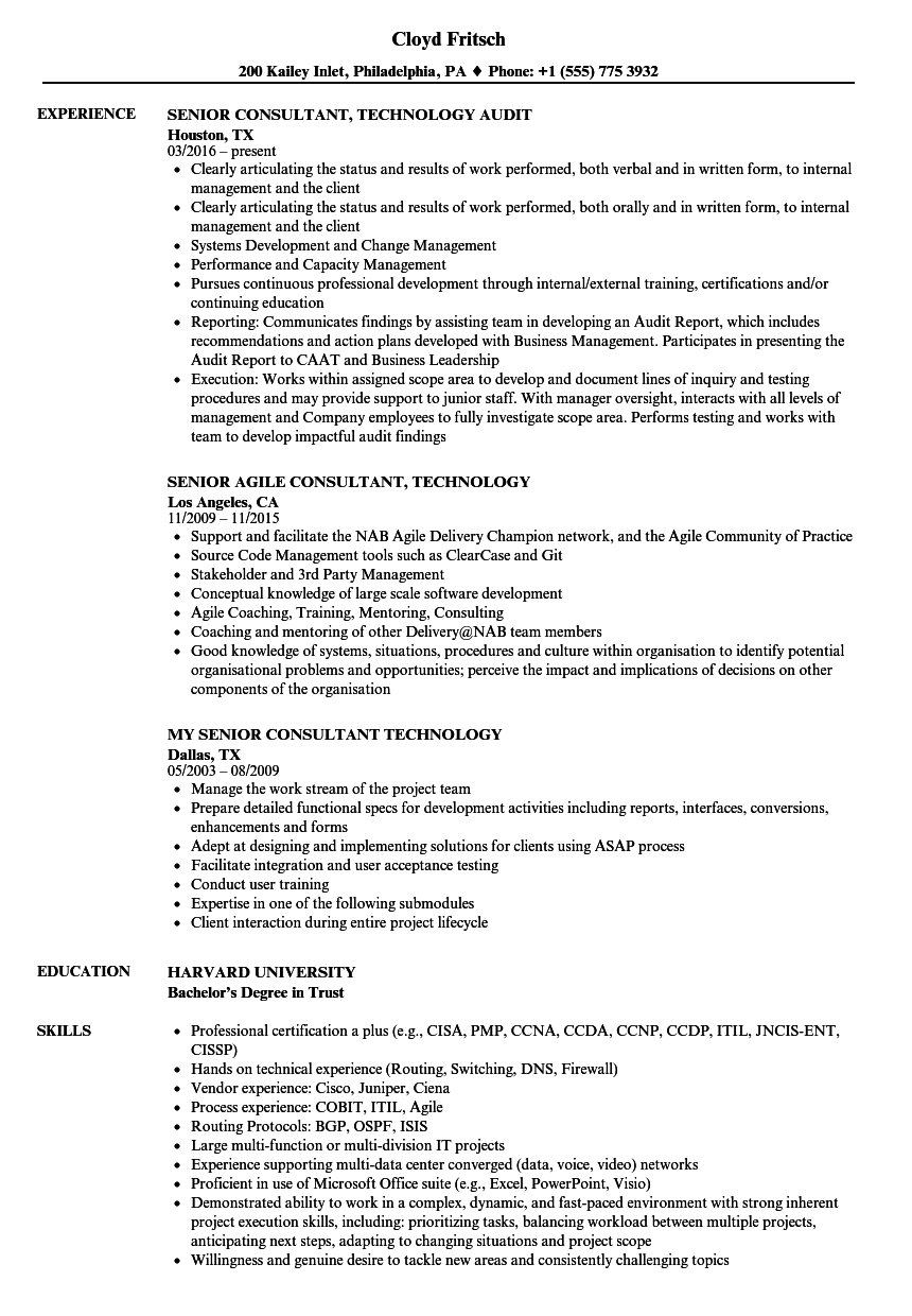 consultant technology resume samples