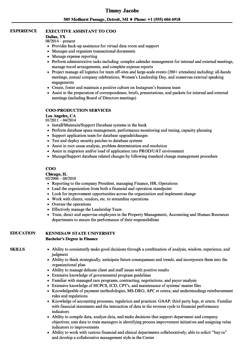 coo Resume Samples Velvet Jobs