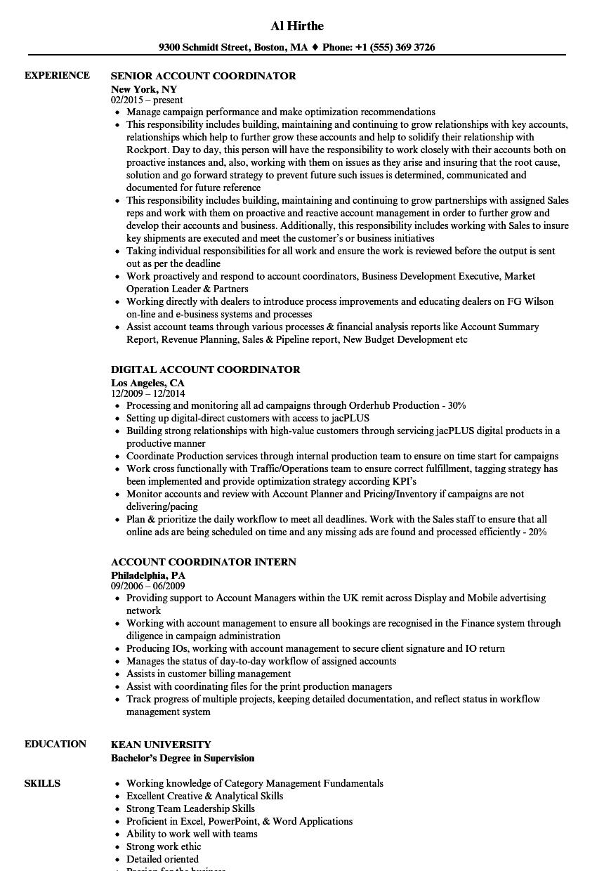 Nice Work Ethic Resume Sample Gallery - Wordpress Themes Ideas ...