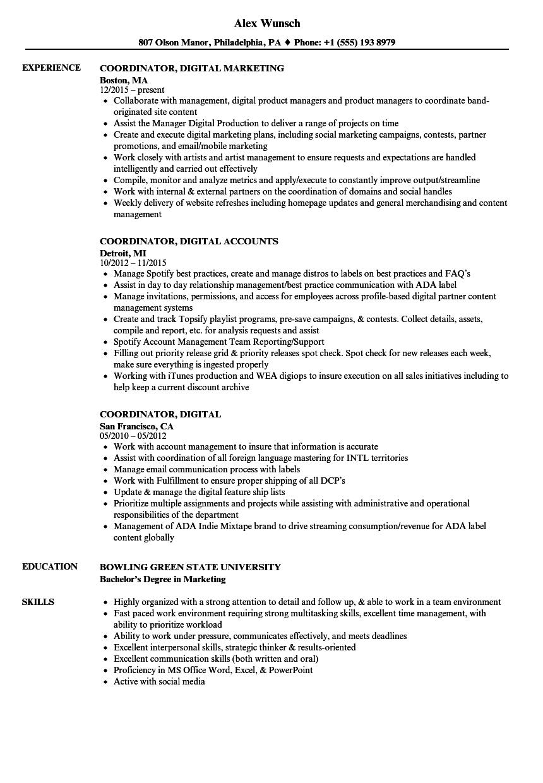 Coordinator, Digital Resume Samples   Velvet Jobs