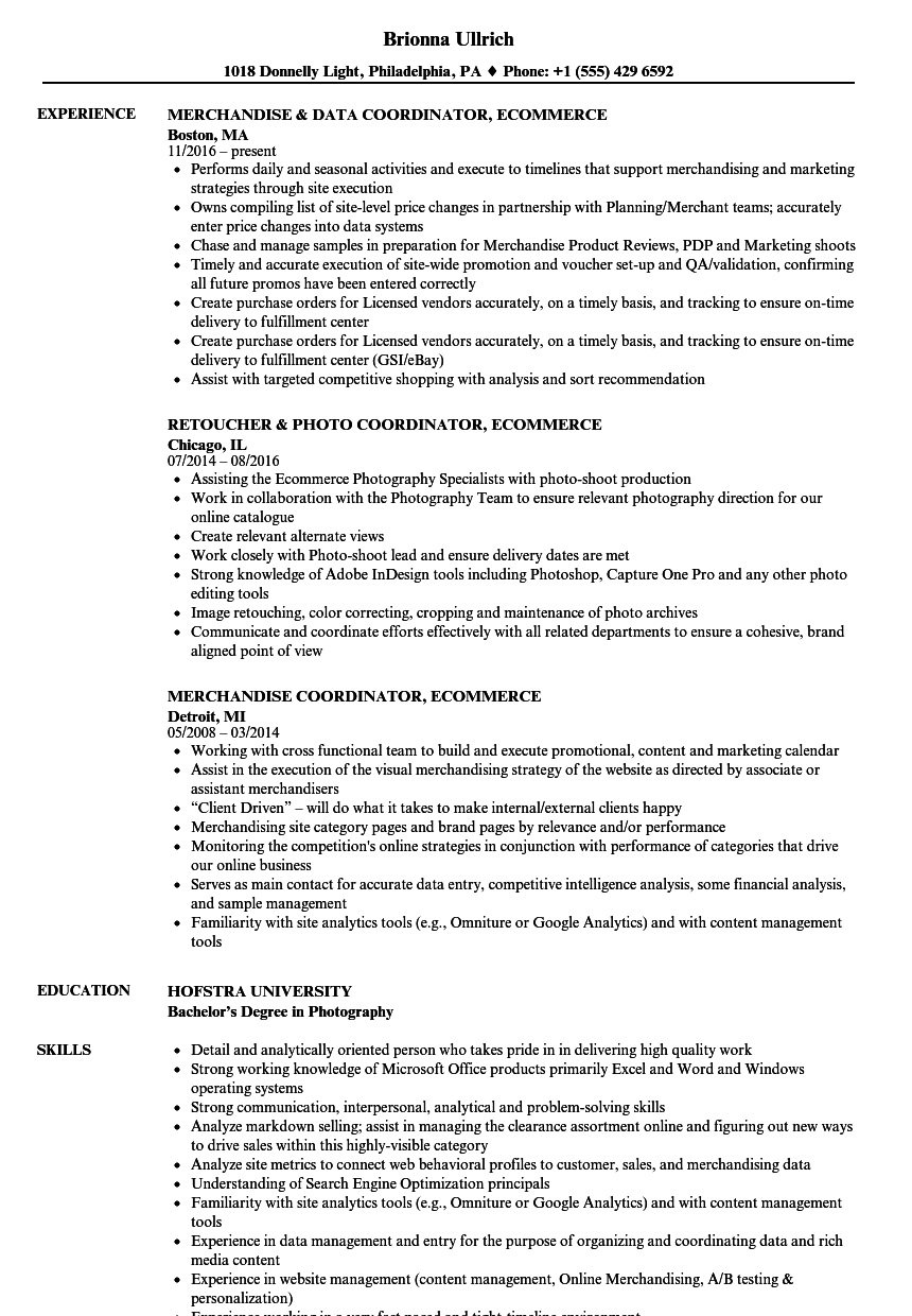 coordinator  ecommerce resume samples
