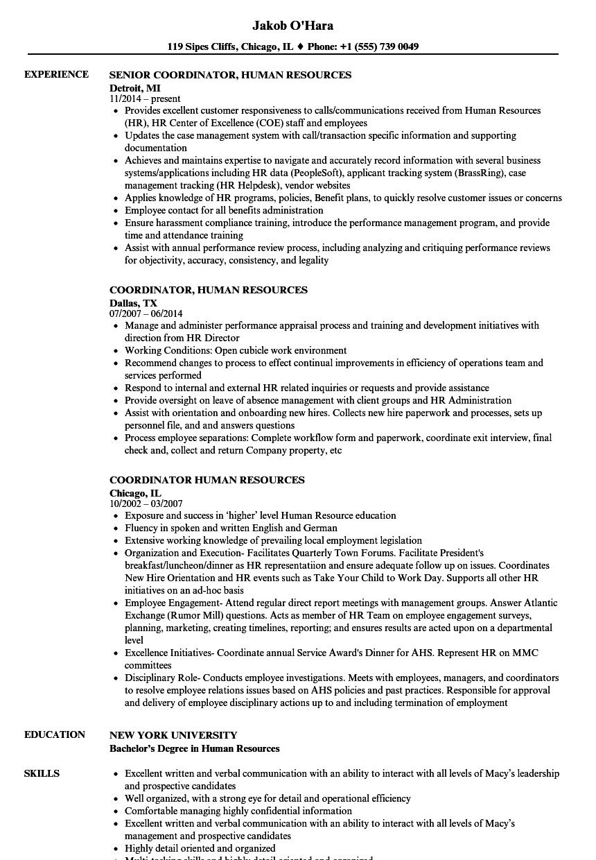 coordinator  human resources resume samples