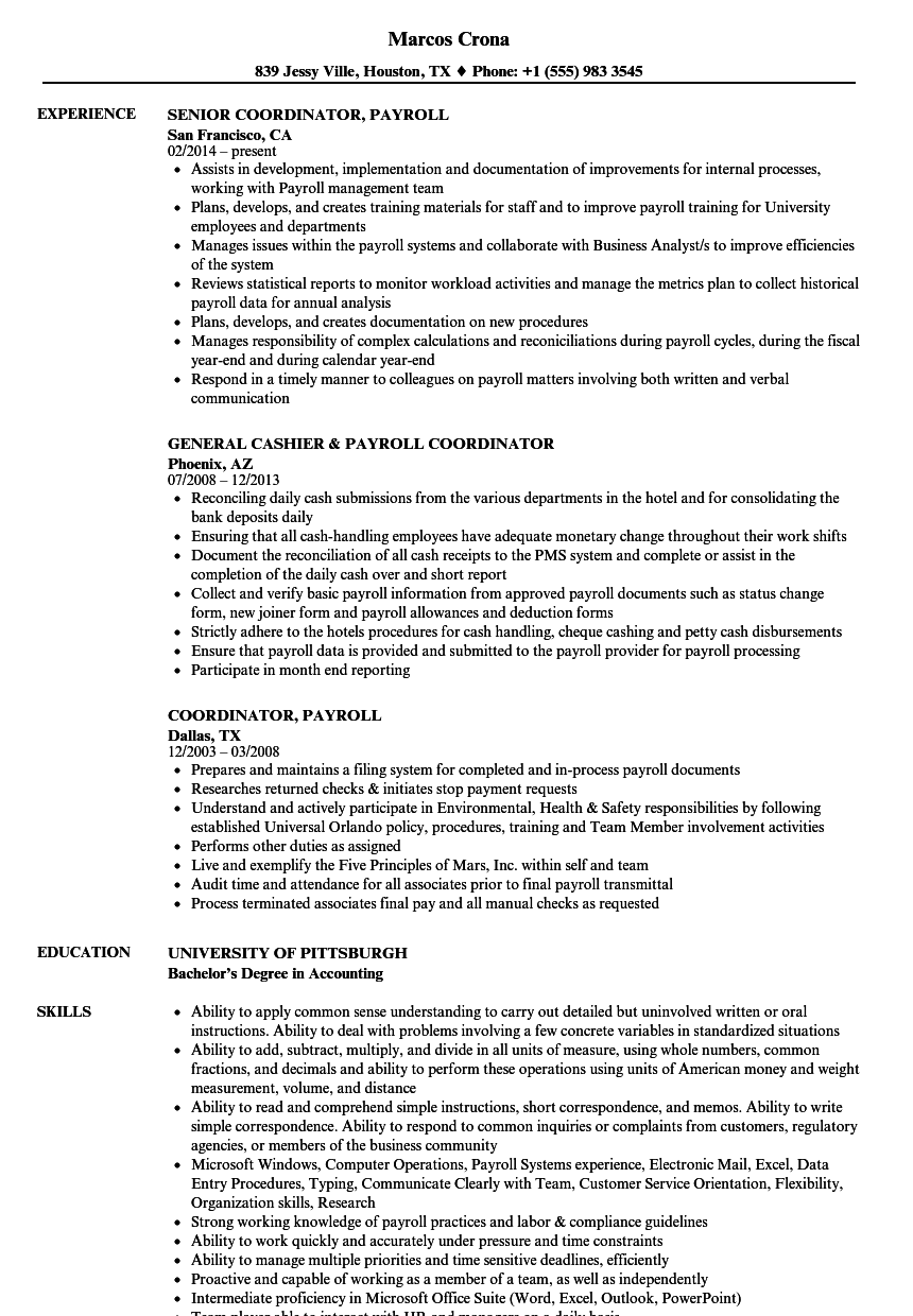 coordinator  payroll resume samples