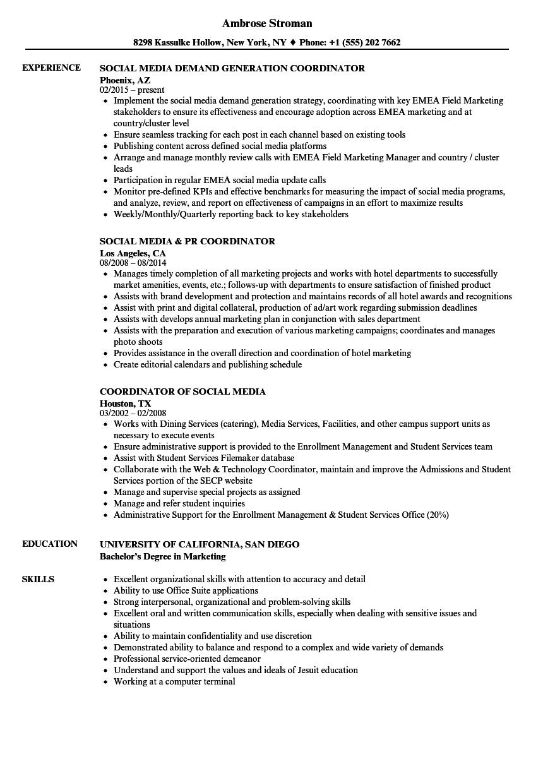 social media resume samples