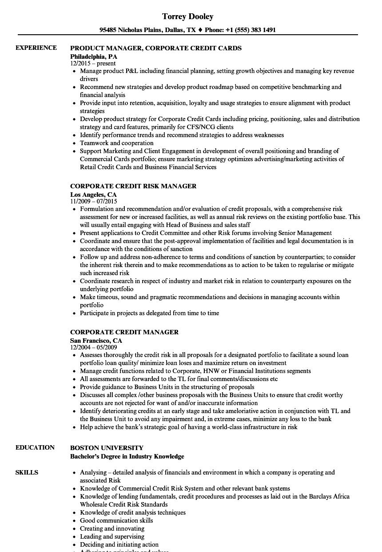 Corporate Credit Resume Samples | Velvet Jobs