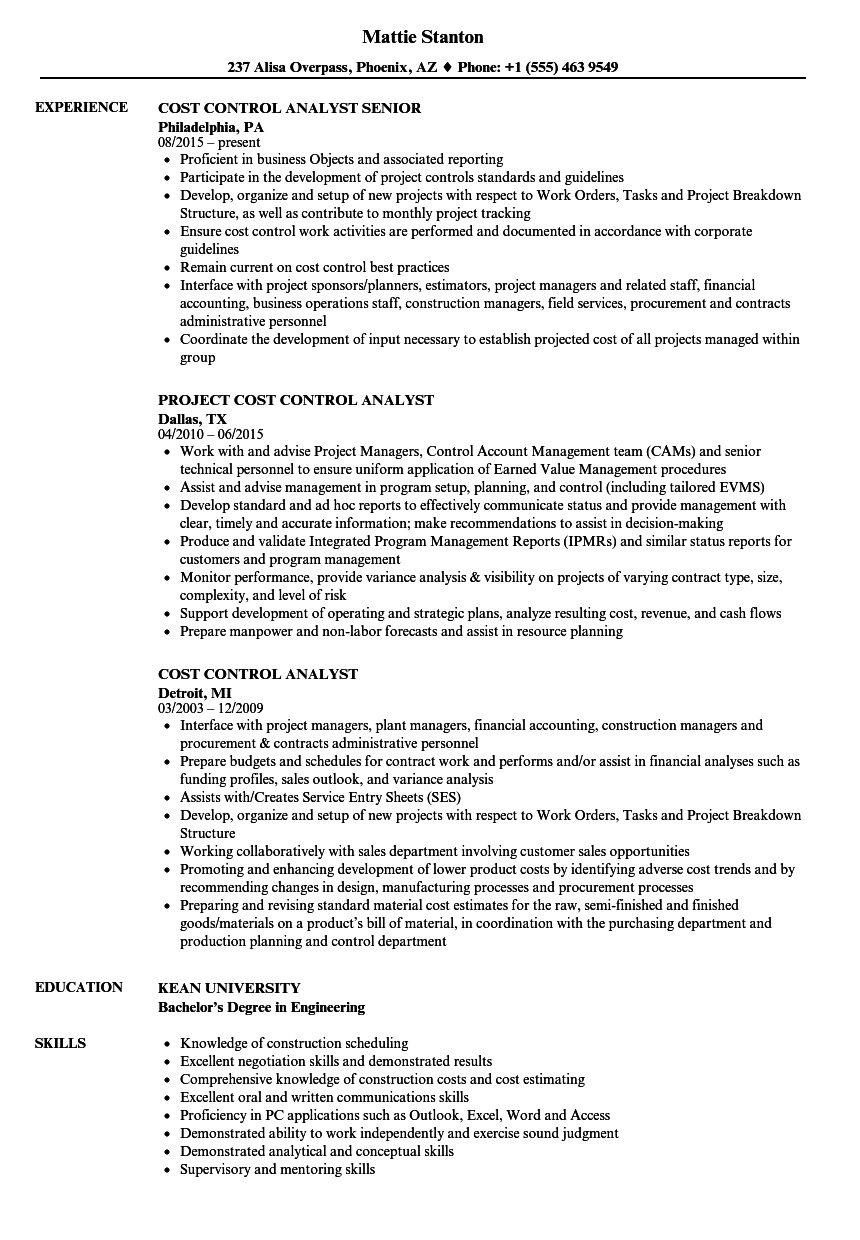 cost control analyst resume samples