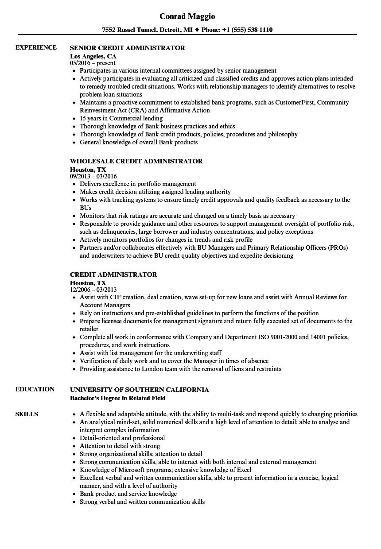 Credit Administrator Resume Samples Velvet Jobs