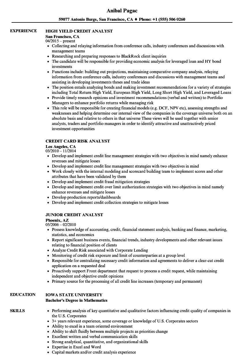 credit analyst  analyst resume samples