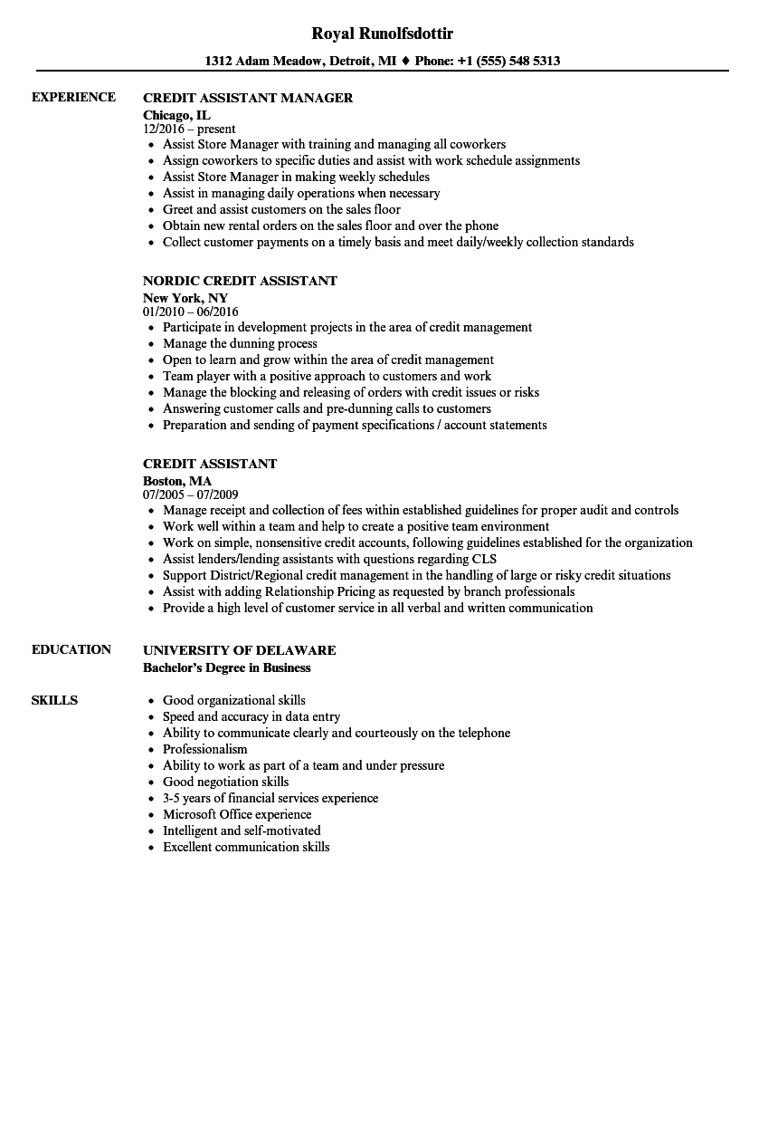 credit assistant resume samples