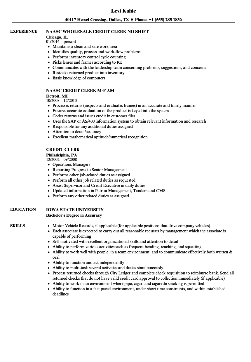 credit clerk resume samples