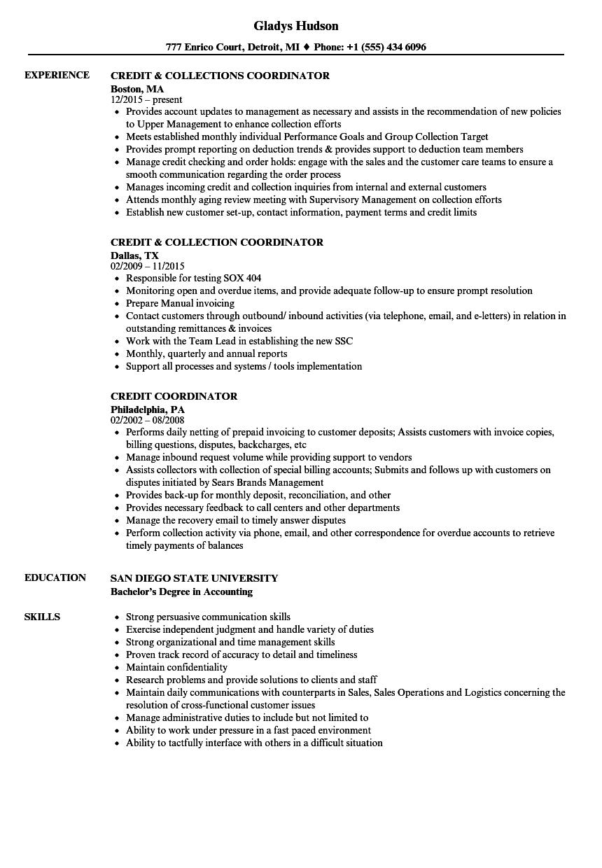 Credit Coordinator Resume Samples | Velvet Jobs