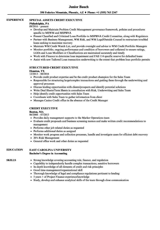 download credit executive resume sample as image file