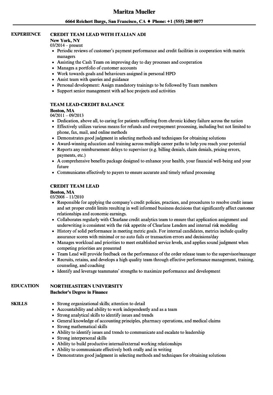 credit lead resume samples