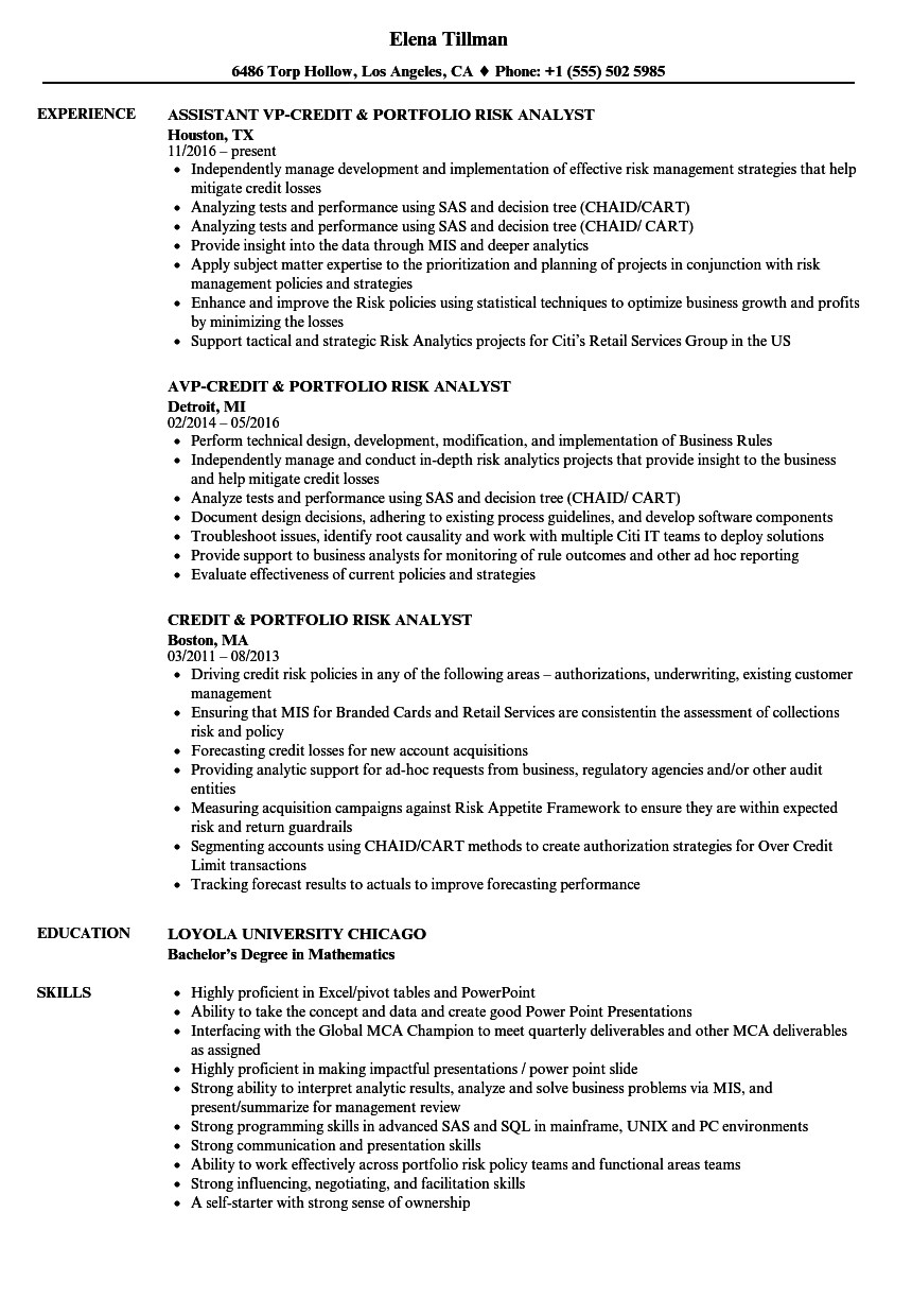credit  u0026 portfolio risk analyst resume samples