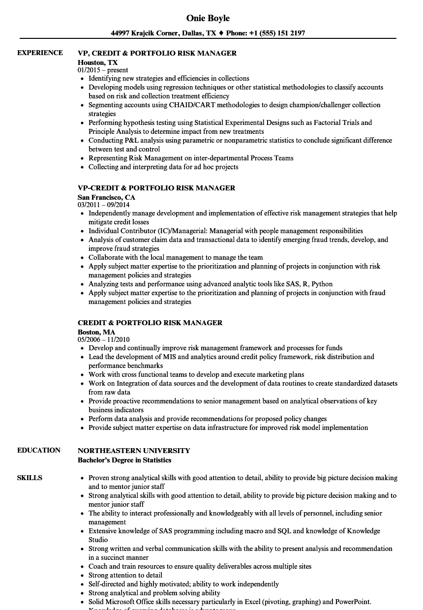 credit  u0026 portfolio risk manager resume samples