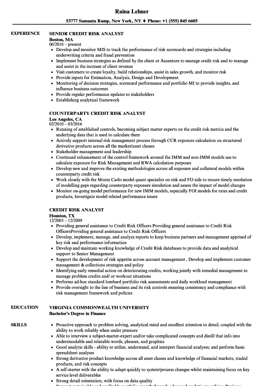 Risk Analyst Resume Selol Ink