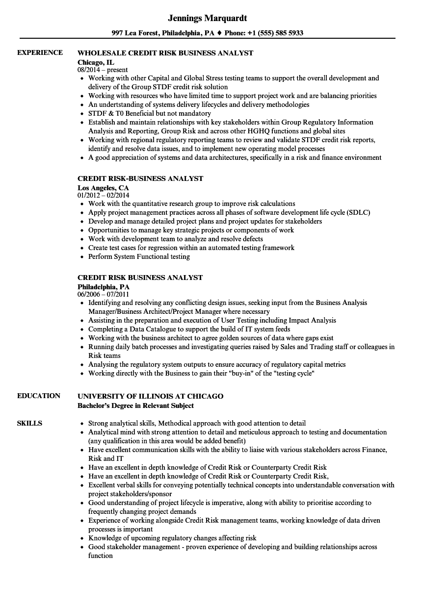 credit risk business analyst resume samples