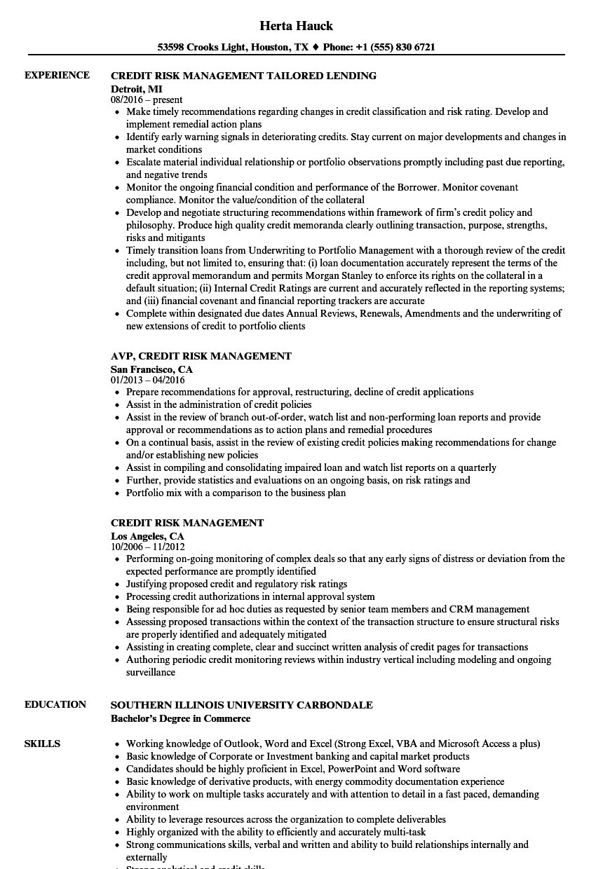 Credit Risk Management Resume Samples | Velvet Jobs