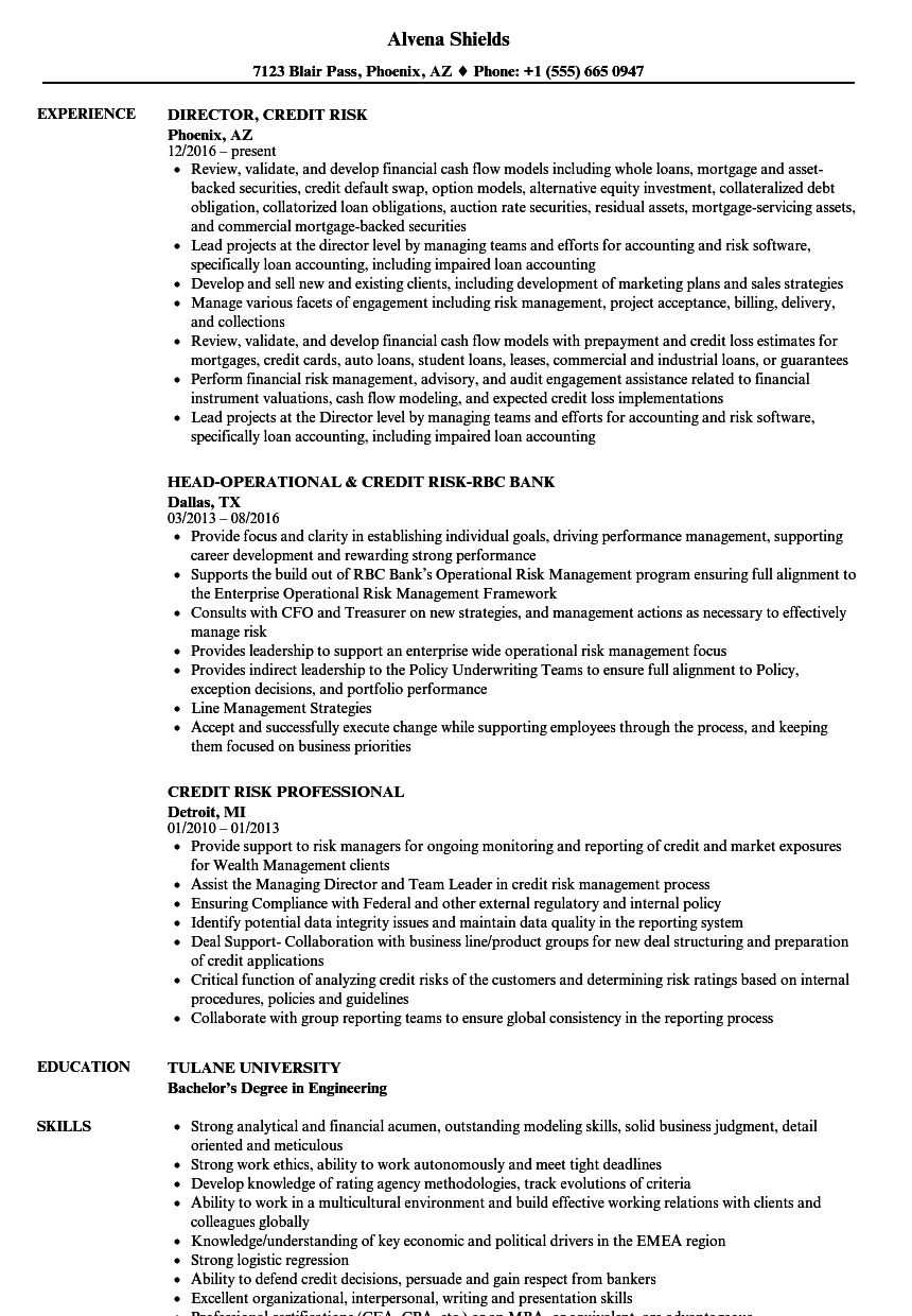 Credit Risk Resume Samples Velvet Jobs
