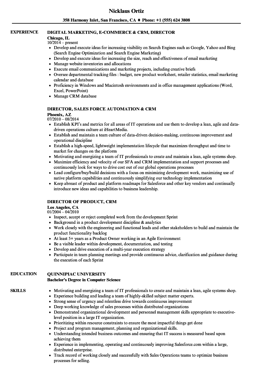 Crm Director Resume Samples Velvet Jobs