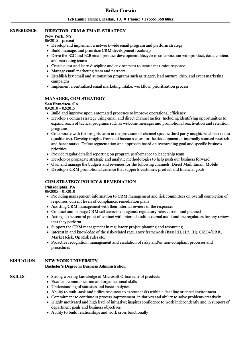 crm strategy resume samples