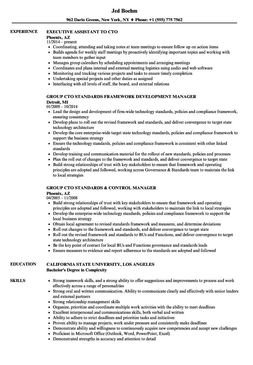 resume Cto Resume cto resume samples velvet jobs download sample as image file