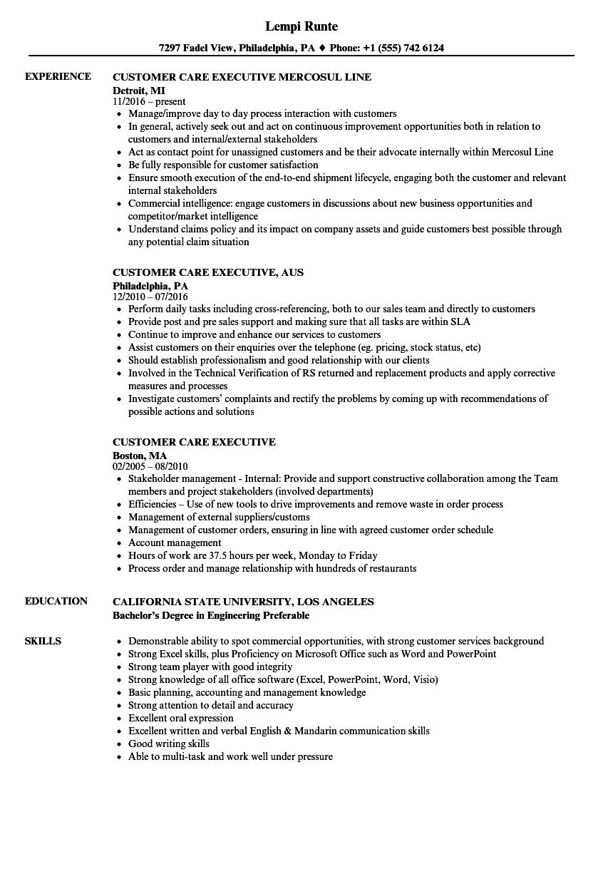 Download Customer Care Executive Resume Sample As Image File