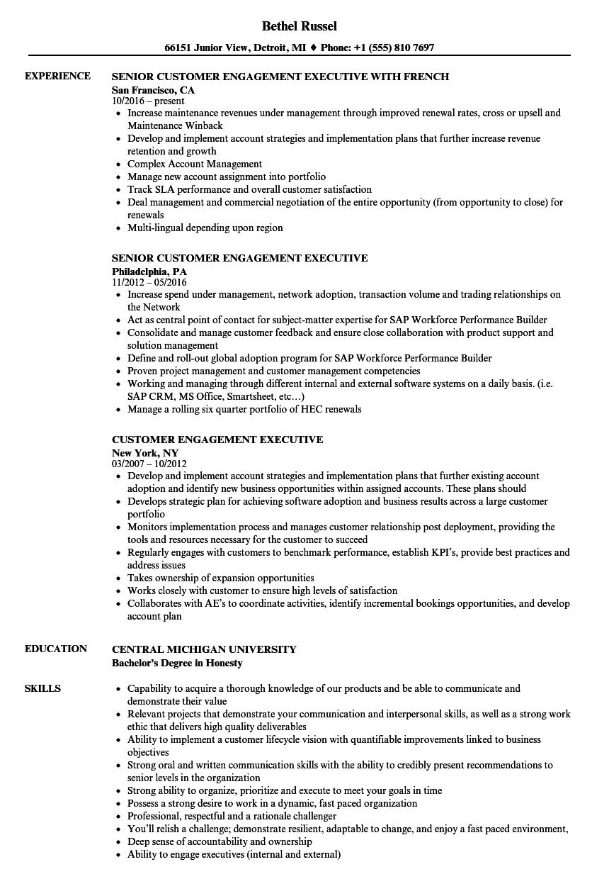 customer engagement executive resume samples