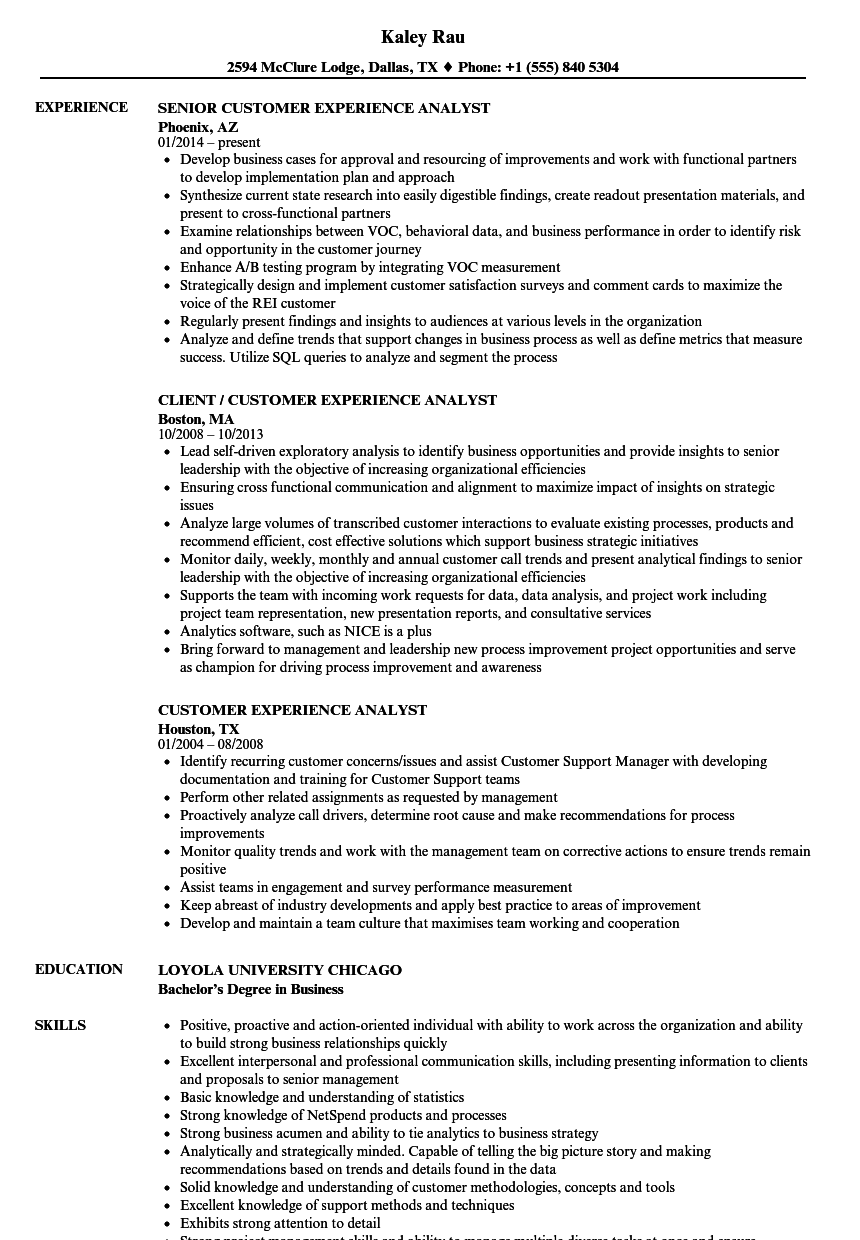 customer experience analyst resume samples