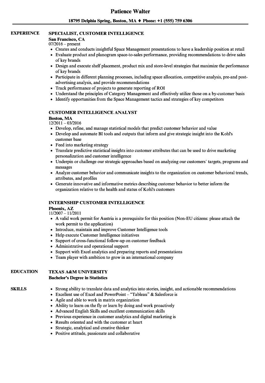 Customer Intelligence Resume Samples | Velvet Jobs