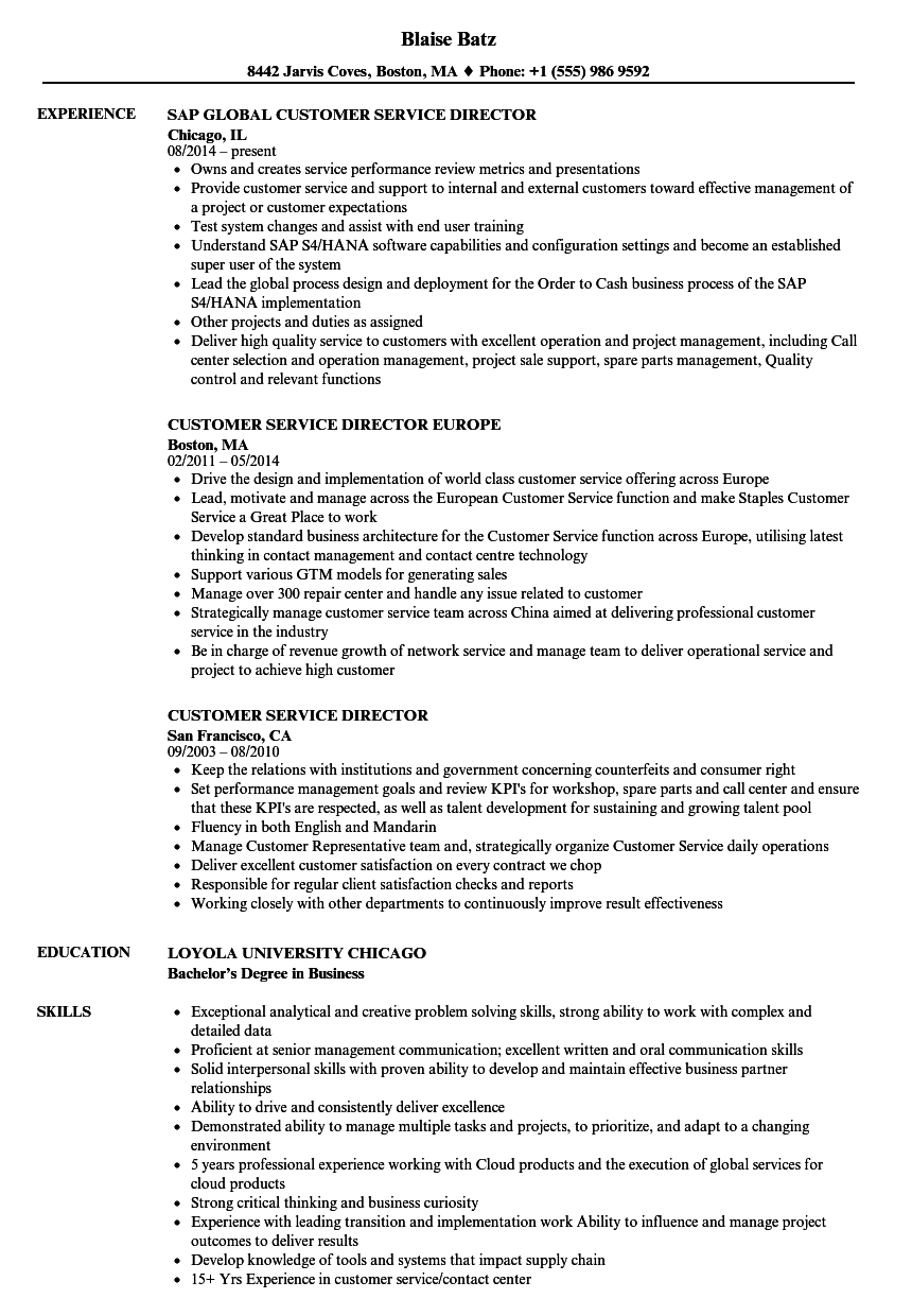 customer service director resume samples