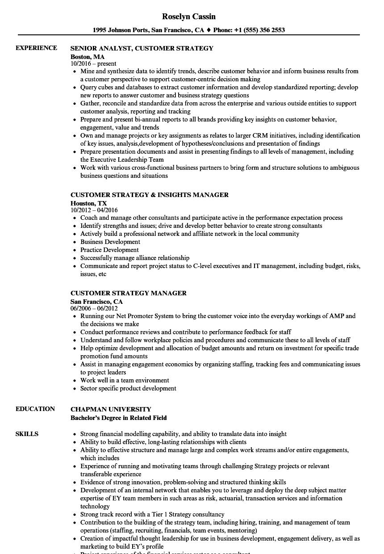Customer & Strategy Resume Samples | Velvet Jobs