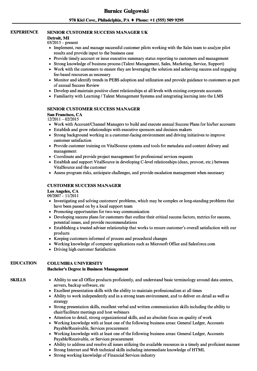 Customer Success Manager Resume Samples Velvet Jobs