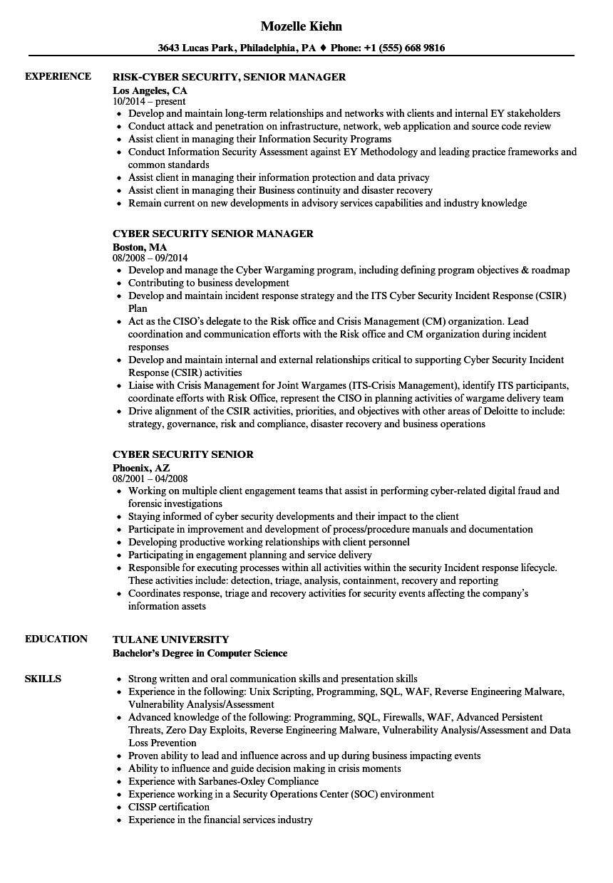 cyber security senior resume samples