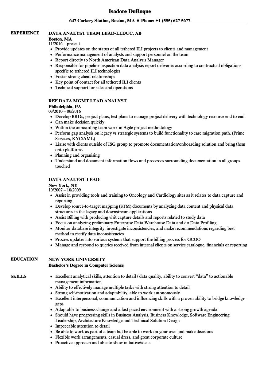Data Analyst Lead Resume Samples | Velvet Jobs