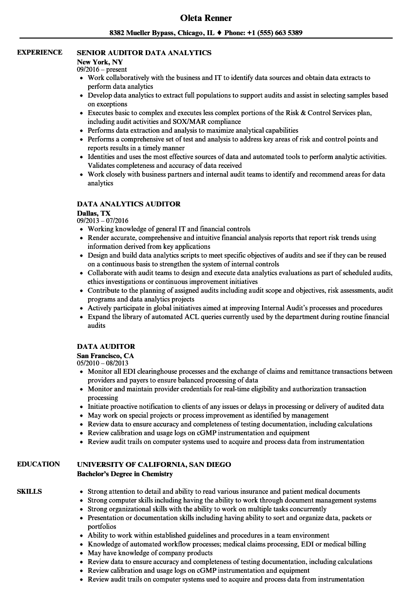 data auditor resume samples velvet jobs