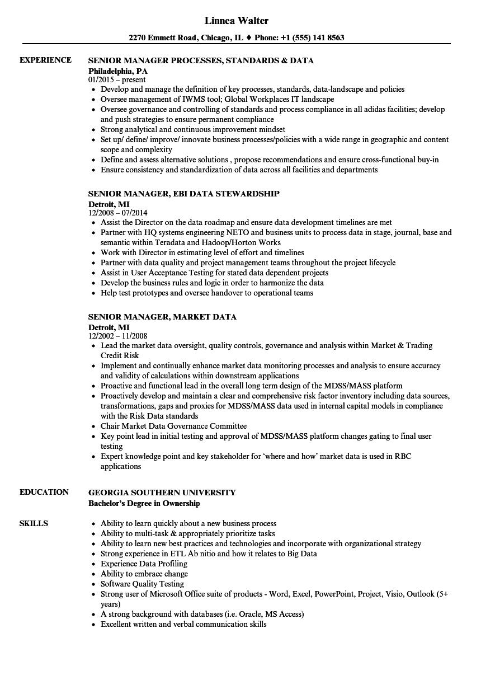 data manager senior resume samples