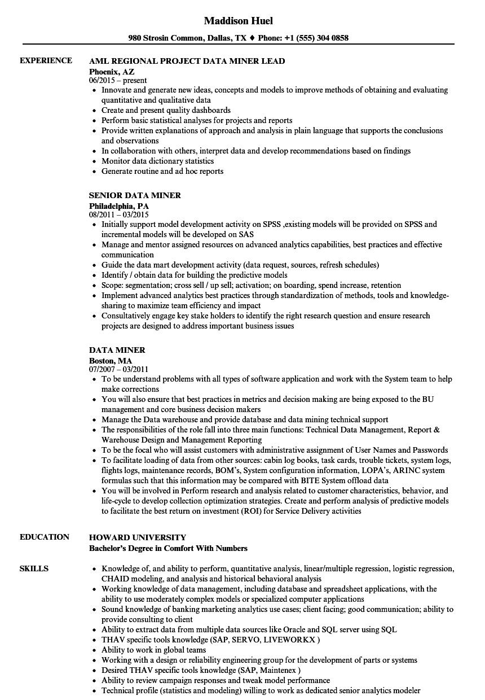 data miner resume samples