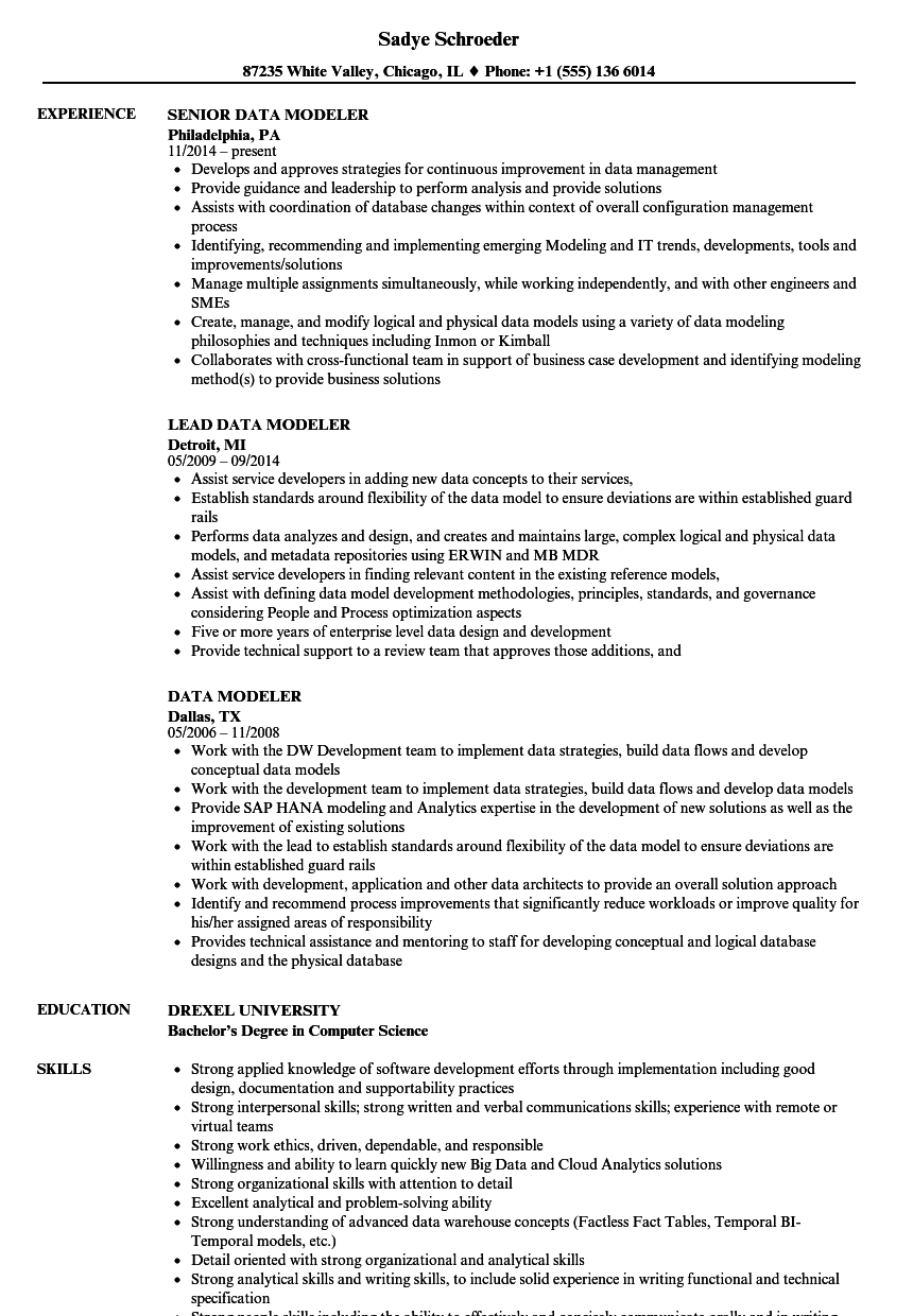 data modeler resume samples