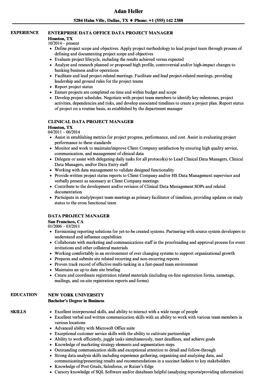Data Project Manager Resume Samples Velvet Jobs